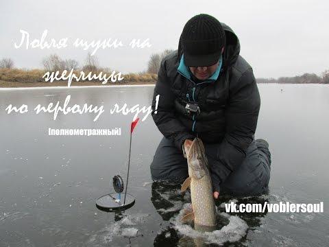 Щука на жерлицы по первому льду. Видео отчет ноябрь 2014 г.