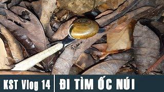 KST Vlog 14 - Đi Tìm Ốc Trên Núi Đá