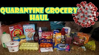 Another Quarantined Grocery Haul 2020