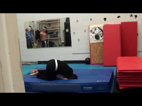 Ninjutsu: Training Hard Image 1