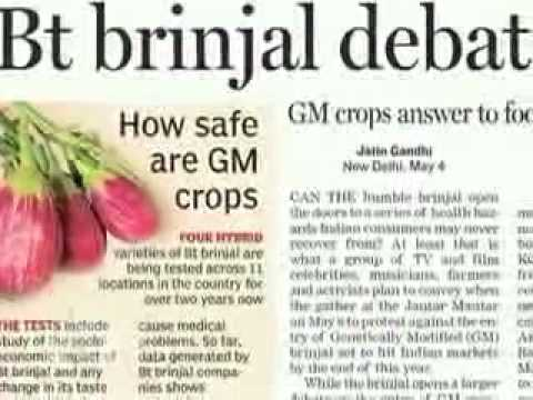 DN! India Blocks Sale of Monsanto GM Crop