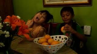 Have You Tried a Lemorange? Lemon plus Orange= Meyer Lemons