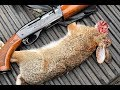 Rabbit Hunt 1 19 2019 I Had To Shoot One In The Face mp3