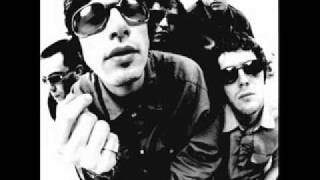 Watch Super Furry Animals Hello Sunshine video
