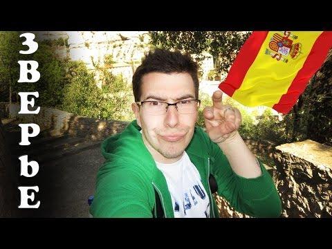 Вложки - Как доехать до Монсеррат #Barcelona2014