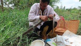 Quái Vật Lại Xuất Hiện - Bẫy Rắn Võ Minh Phụng/Miền Tây Sông Nước