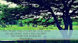 Vídeo 322 de Hymn