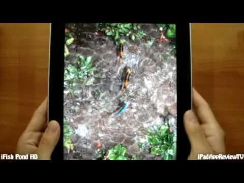 iFish Pond HD - iPad App Review TV
