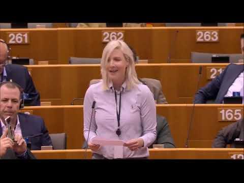 Laura Huhtasaaren Brexit-puhe 29.1.2020