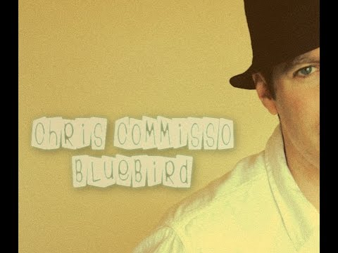 BLUEBIRD - Chris Commisso original