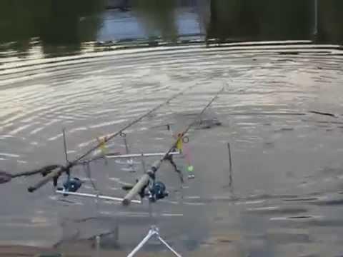 платна рыбалка на белокаменном шоссе