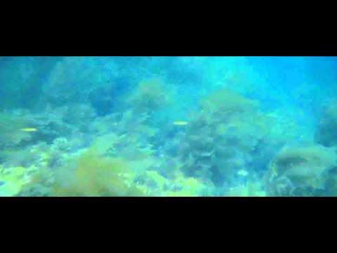 Челюсти Стивен Спилберг 1975 Супер кино про акулу