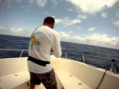 We landed this sail fish off Fort Lauderdale 8 miles out in 850ft of water on 4-21-13