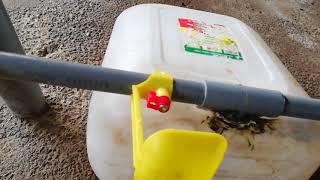 Hướng dẫn làm máng nước tự động cho gà - Trần Thanh Thà