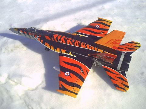 F/A-18E Tiger. Put a tiger in your tank!