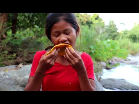 Survival skills: Find Natural ripe papaya In the wild for food - Natural Papaya eating delicious #13