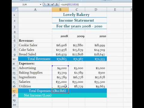 Finding The Total Expenses, Total Revenue And Net Income (Loss) In Excel