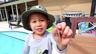 3 Year Old Catches Baby Lizard!