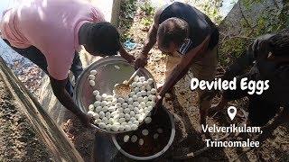 Deviled Eggs for 100 People - Prepared By Meesai Bro
