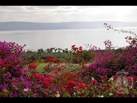 Góra Błogosławieństw I Jezioro Galilejskie | Ekumeniczna Pielgrzymka Do Ziemi Świętej | Dzień 3