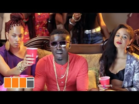 Criss Waddle (r2bees) - Ayi Ft. Bisa Kdei (official Video) video