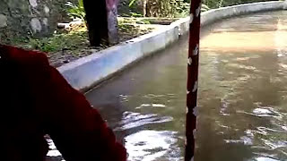 download lagu Cas Waterpark Pandeglang Banten, Mei 2015 gratis