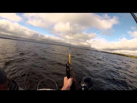 рыбалка на янисъярви базы