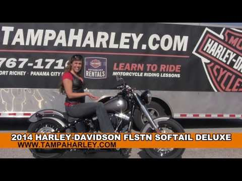 New 2014 Harley Davidson Softail Slim Motorcycle For Sale in Brandon Florida