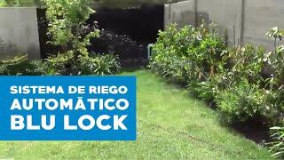 Sistema de riego automático Blu Lock