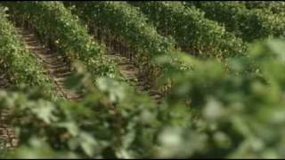 Ferrari Carano Winery Promotional Video