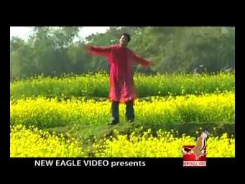Billalpakhi  Sei Prithibi Jemon Silo - Nakul Kumar Biswas   - Youtube.flv video