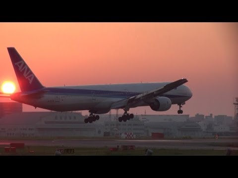 All Nippon Airways B777-300 Circle approach & landing at Fukuoka airport in dusk