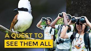 The 'Wildlife' of Birders