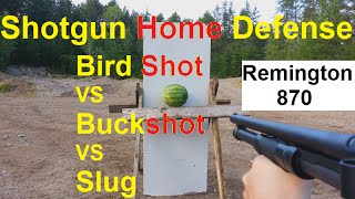 BIRD SHOT IS BEST Home Defense MUST WATCH!!