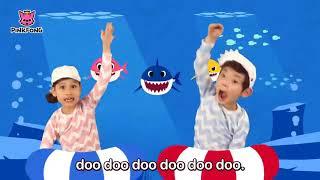 Nhạc thiếu nhi hay nhất Tiếng Anh   Baby Shark   Bé cá mập