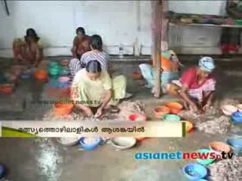 Coastal regulation zone law , people on crisis :Alappuzha  News: Chuttuvattom 27th Jan 2014