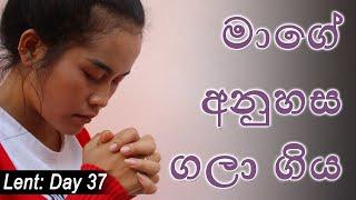 Supuwath Arana - 2020-04-02