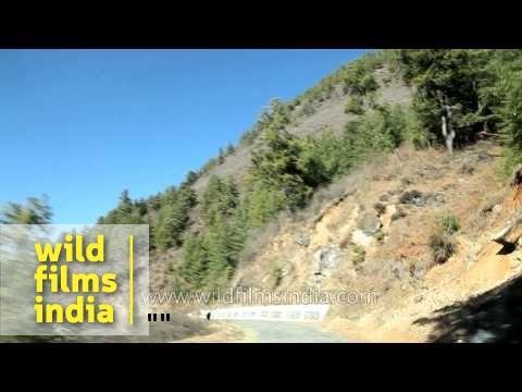 Way to Haa Bhutan C1 L72 8