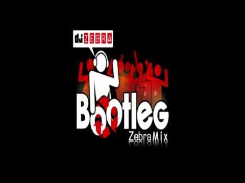 DJ Zebra - Si j avais de l OCB (Billy ze kick & les Gamins en folie vs. Les Wampas)