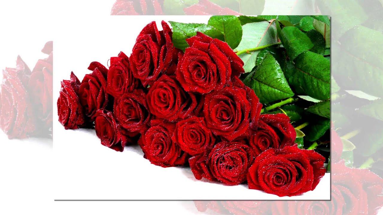 Розы и поздравления с днем рождения