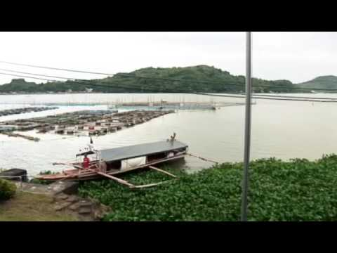 Binangonan Freshwater Station Video