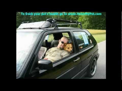 Dog Health Tracker