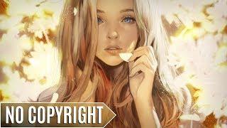 Cjbeards - Rainbow | ♫ Copyright Free Music
