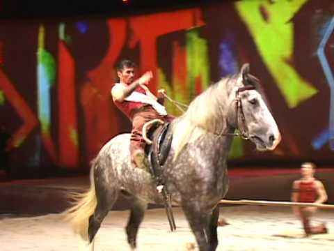 Cavalia: a Dazzling Display of Horse Power and Beauty