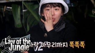 Seul Gi Is The Only Peaceful One As Always Law Of The Jungle Ep 322