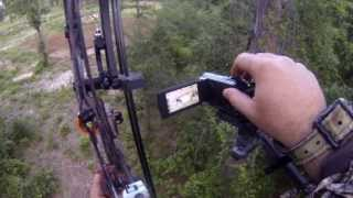 download lagu 2013 Bowhunting Wild Boar - G5 Striker Broadhead gratis
