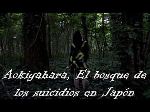 Aokigahara, El bosque de los suicidios en Japón