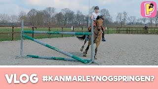 Penny TV & Felinehoi Crosstraining | VLOG #4 | Penny TV