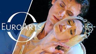 Great Dancers of Our Time: Vladimir Malakhov, Lucia Lacarra & Kiyoko Kimura (2003)