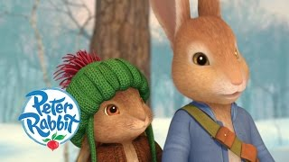 Peter Rabbit - Christmas Tale